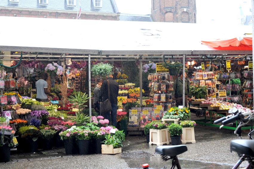 Mikkel Paige Photography   Travel   Europe   Amsterdam, Netherlands   Flower Market