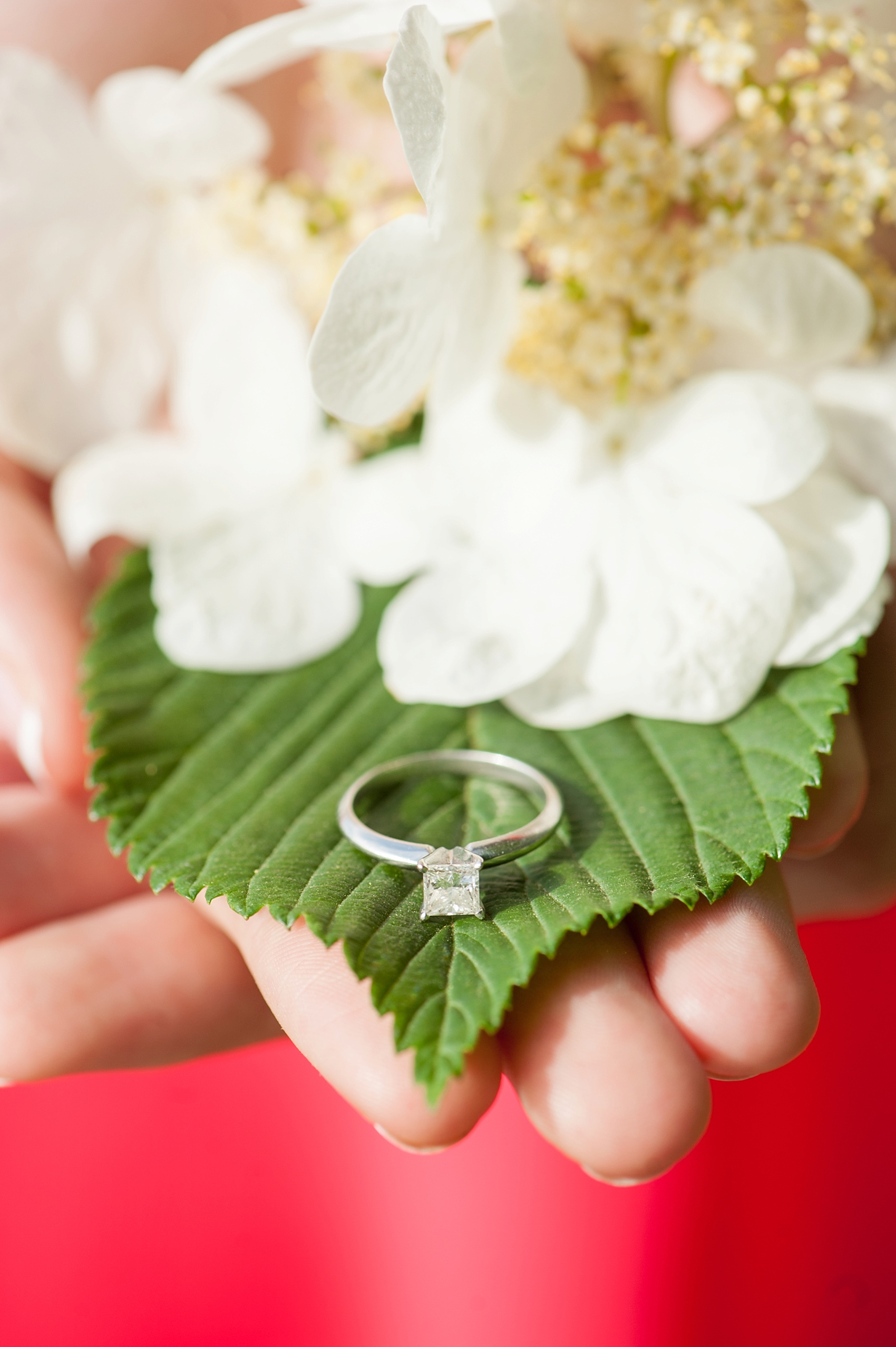 Long Island City waterfront engagement session at Gantry State Park by Mikkel Paige Photography, NYC wedding photographer. Solitaire square cut diamond engagement ring on spring hydrangea flowers.