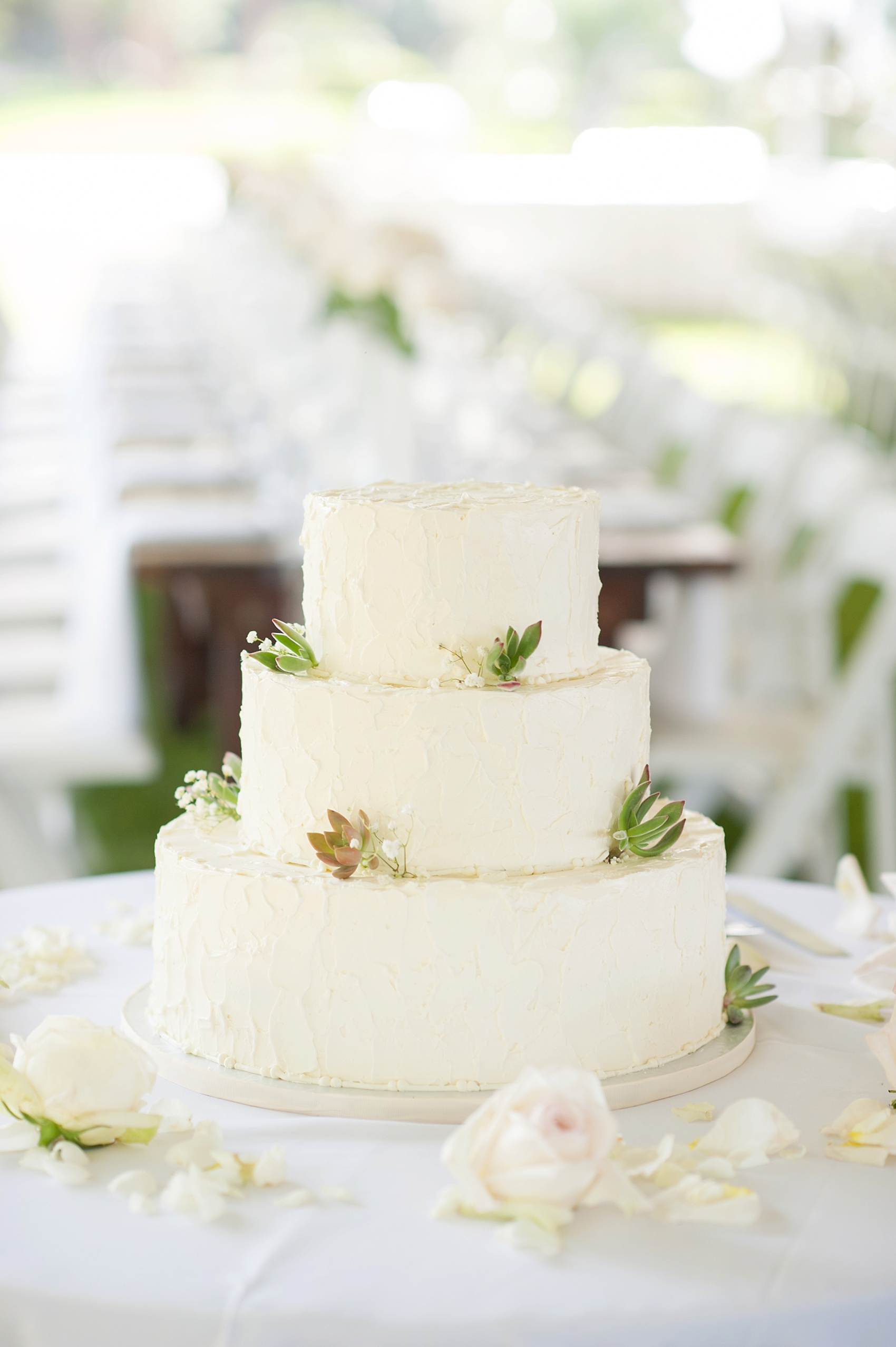 White tiered buttercream wedding cake with succulents attached for a wedding reception at Haig Point in South Carolina, off the coast of Hilton Head. Photos by Mikkel Paige Photography.