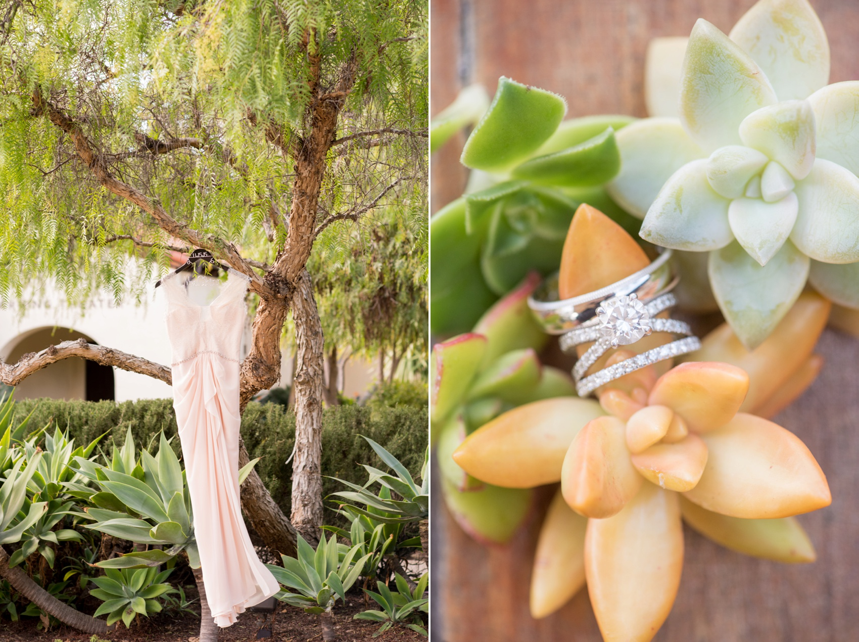Estancia La Jolla wedding photography by Mikkel Paige Photography. Tropical wedding, California coast. Wedding ring photos on succulent plants and pink lace and chiffon bridal gown.