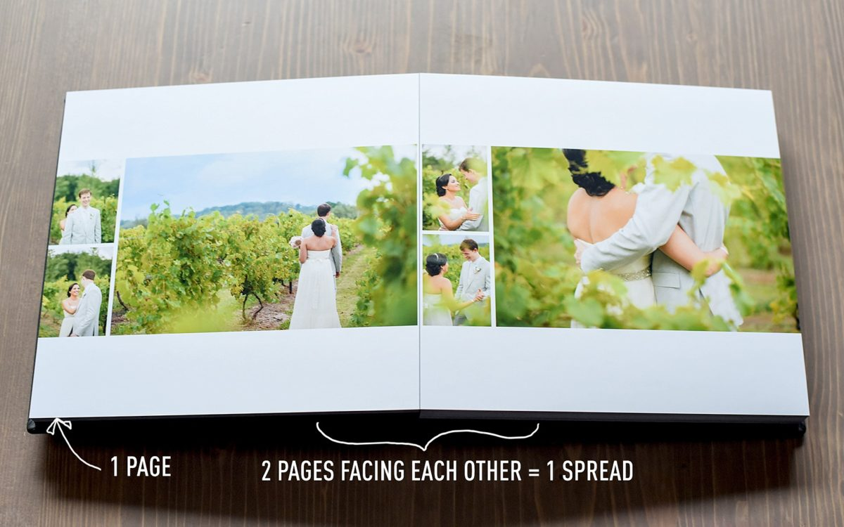 Anatomy of a Wedding Album and FAQs