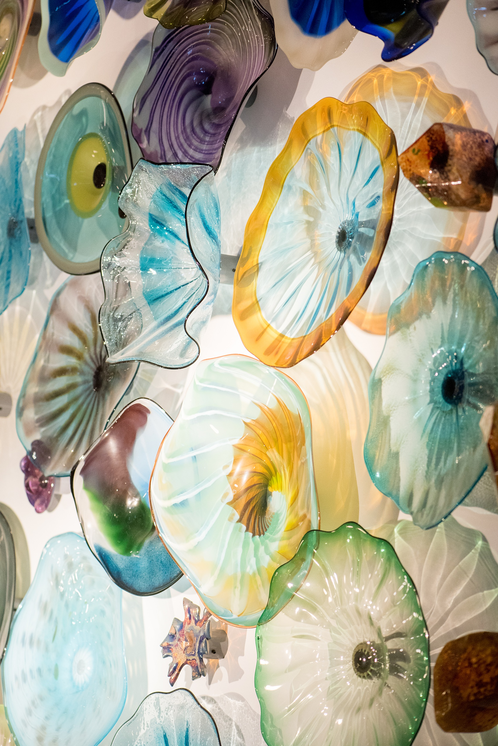 Photos of Vidrio restaurant in Raleigh, NC by Mikkel Paige Photography. Wedding venue in North Carolina with mediterranean and Spanish inspired art and interior design. Picture of Chihuly like colored glass sculptures.