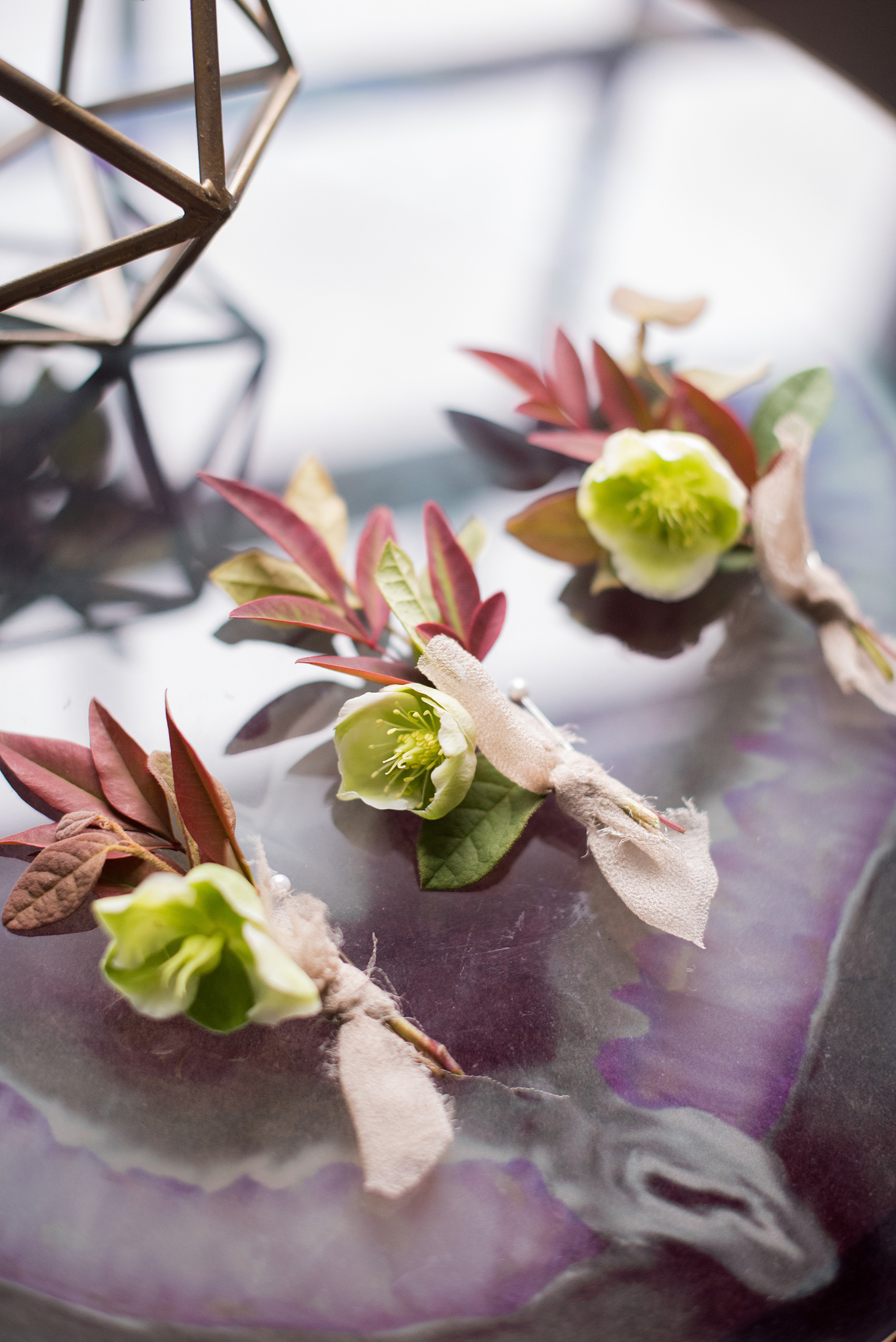 Mikkel Paige Photography photos from a wedding at Leslie-Alford Mims House in North Carolina. Detail picture of the groomsmen's Hellebores boutonnieres with fall foliage and silk ribbon.