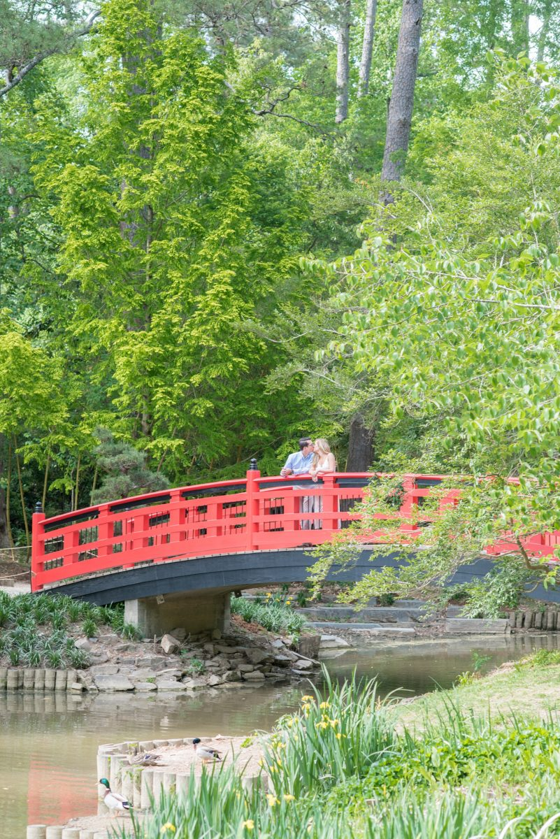 Duke Gardens engagement photos in Durham, North Carolina, by Mikkel Paige Photography. Trees with leaves in full bloom during spring reveal themselves for a May session. #DurhamPhotographer #DurhamWeddingPhotographer #SarahPDukeGardens #DukeGardens #DurhamEngagementSession #JapaneseBridge #redbridge