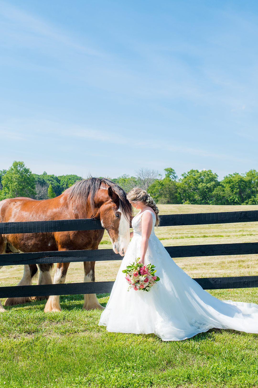 The bride enjoyed The Lodge at Mount Ida for her small wedding in Charlottesville Virginia partially because of the Clydesdale horses on property. Photos by Mikkel Paige Photography.