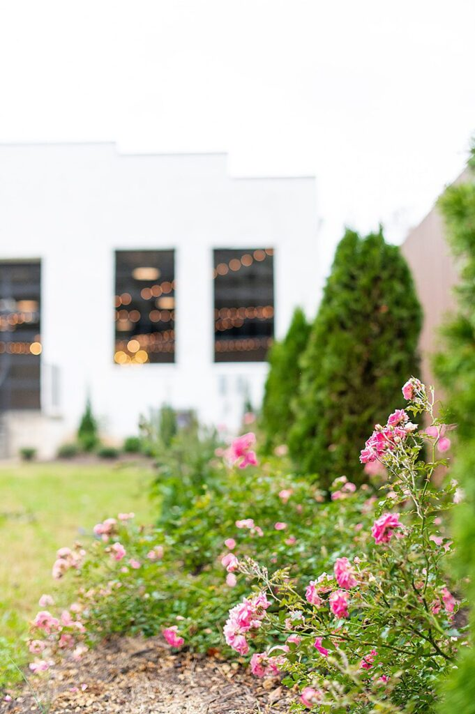 Roses and the green lawn at The Graham Mill in NC, an event space and wedding venue.